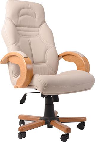 mudur koltuklari