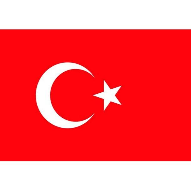 Türk Bayragı