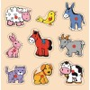 Evcil Hayvanlar