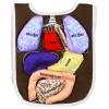 Organ Önlügü